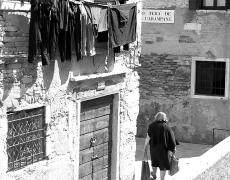 2011 Venice